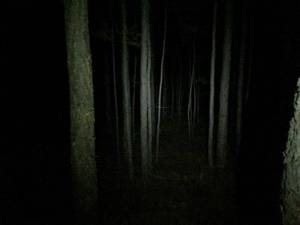 quite creepy to go there at night, anyone remember Blairwitch Project?