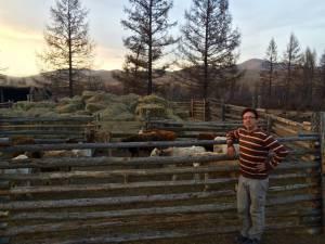 winter quarters for the calves