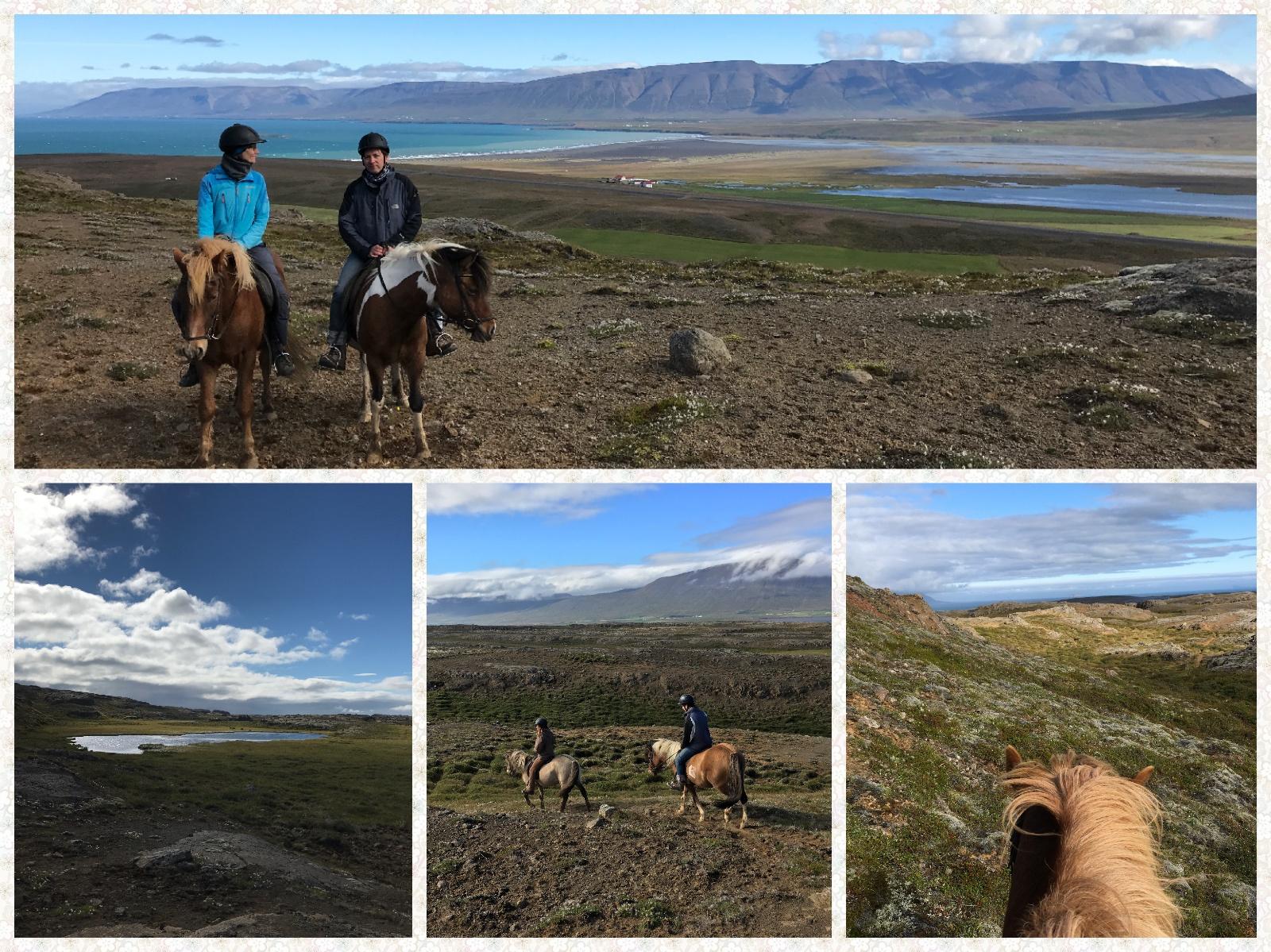 Horseback riding around Saudarkrokur